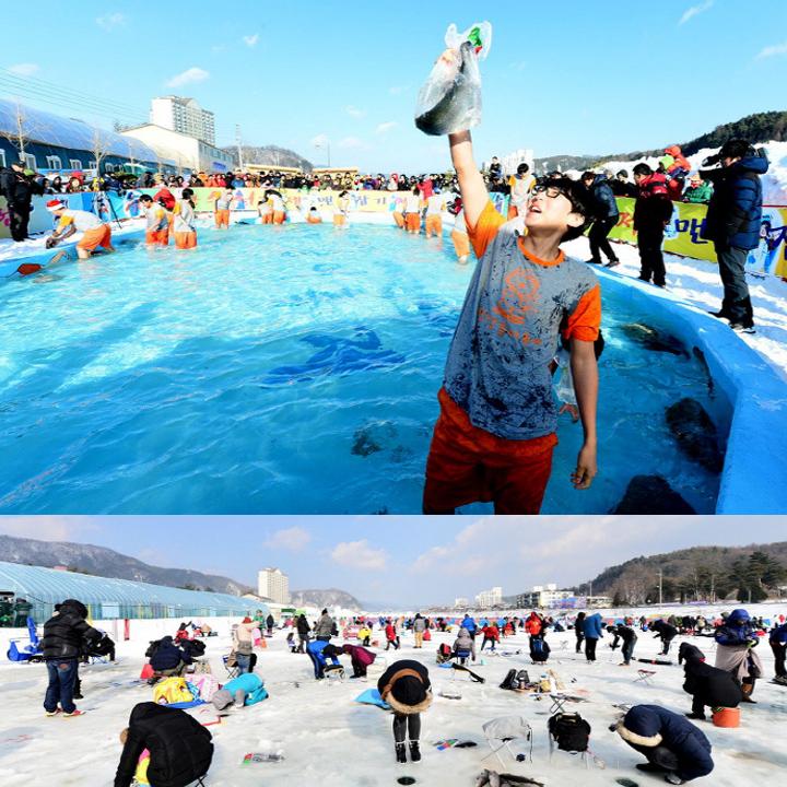 Pyeongchang Trout Festival