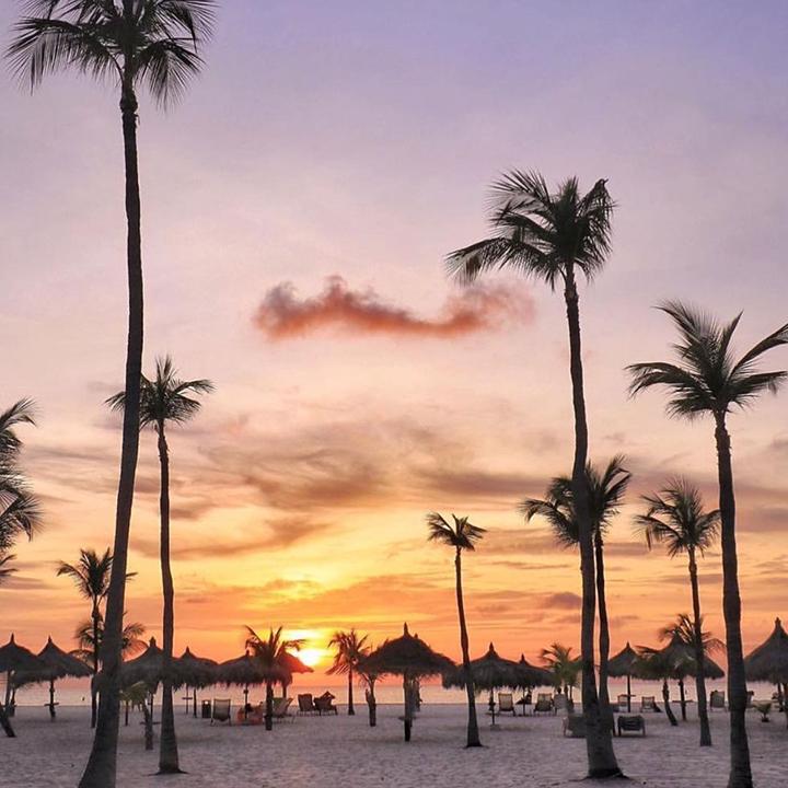 Manchebo beach resort Aruba