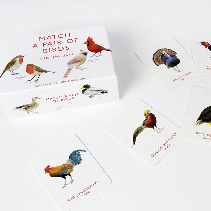 bird match game