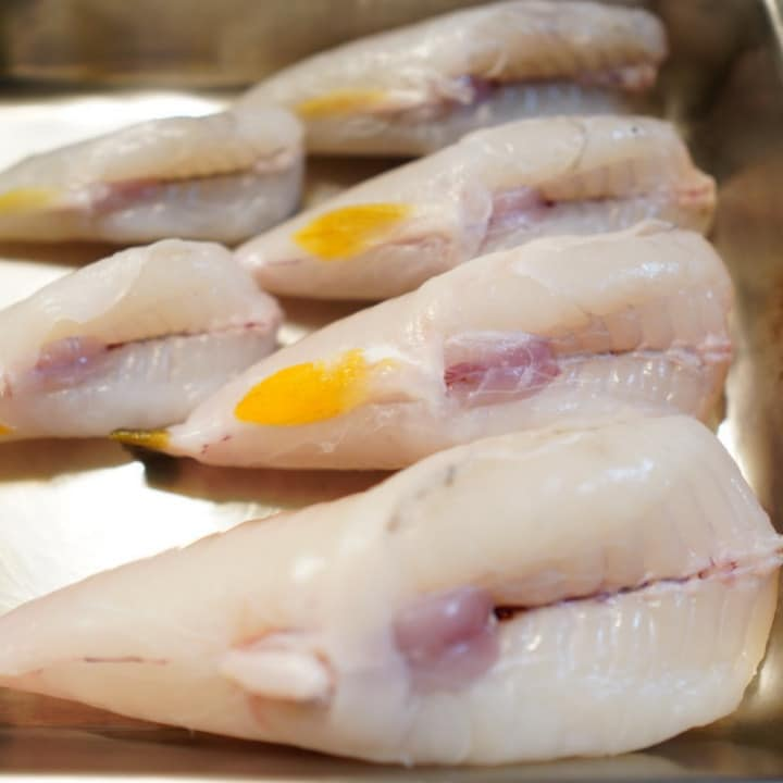 21 Most Exotic & Weird Foods In The World - Fugu